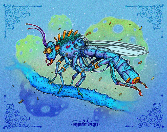 wosnan-ilustracion-insecto